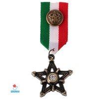 Prisegamas ženkliukas-medalis Žvaigždė Y
