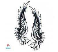 Laikina tatuiruotė Sparnai-QSC051; 19x12cm