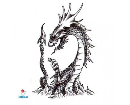 Laikina tatuiruotė Drakonas-LS033; 10x6cm