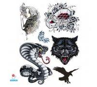Laikina tatuiruotė Rinkinys-44; 16x12cm