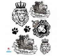 Laikina tatuiruotė Rinkinys-62; 16x12cm