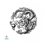 Laikina tatuiruotė Drakonas-AE44; 6x6cm