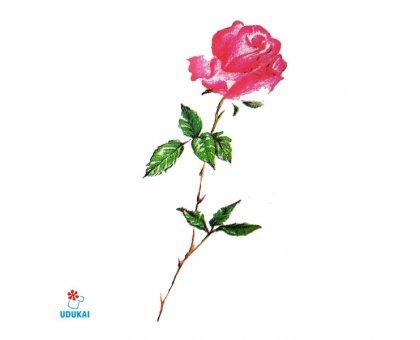 Laikina tatuiruotė Rožė-B25; 10x6cm