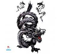 Laikina tatuiruotė Drakonas-HM330; 20x10cm