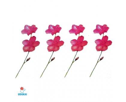 Laikina tatuiruotė Gėlės-W019; 10x6cm